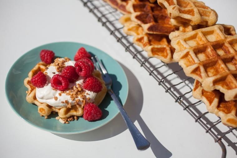 Belgium Waffle web-1